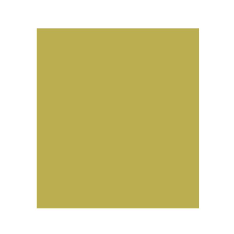Ontario icon